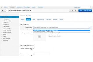 CS-Cart модуль - Посадочные страницы для категорий - настройки категории